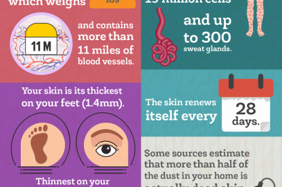 Amazing Fun Facts About Your Skin